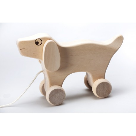 Medinis šuo